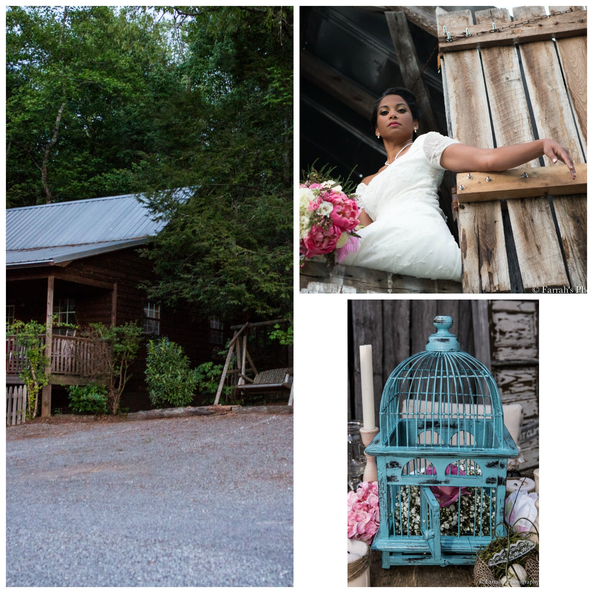 The Gilded Gown - Knoxville TN - Sampson Hollow Shoot 1b | The ...
