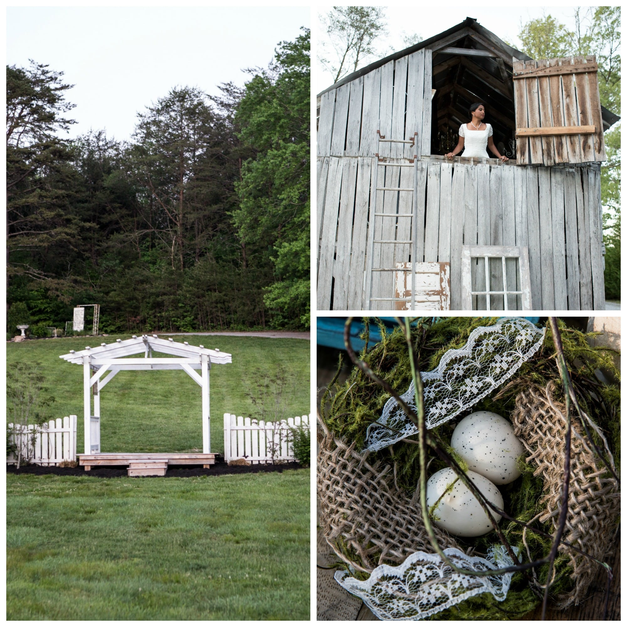 The Gilded Gown - Knoxville TN - Sampson Hollow Shoot 1e | The ...